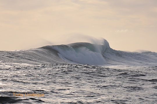 As the sun started to set, the swell peaked