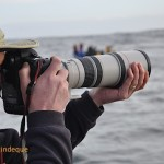 One of the photographers on board Seahorse