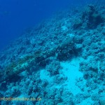 Part of the Jolanda, lying hundreds of metres below