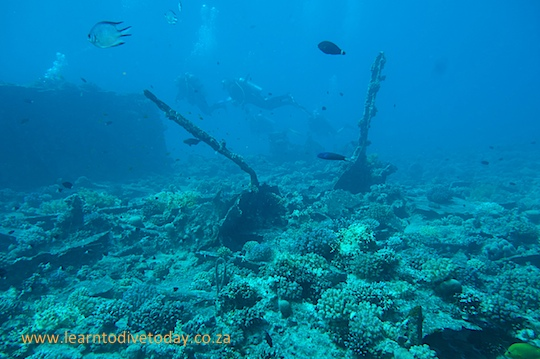 Dive sites (Red Sea): Barge wreck (Bluff Point, Big Gubal Island)