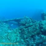 The wreck is covered in coral
