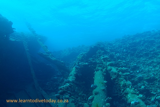Looking up the reef next to the wreck