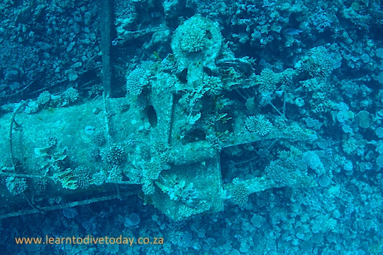 The top of a mast, on the seabed