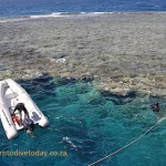 Tying the boat up to a reef