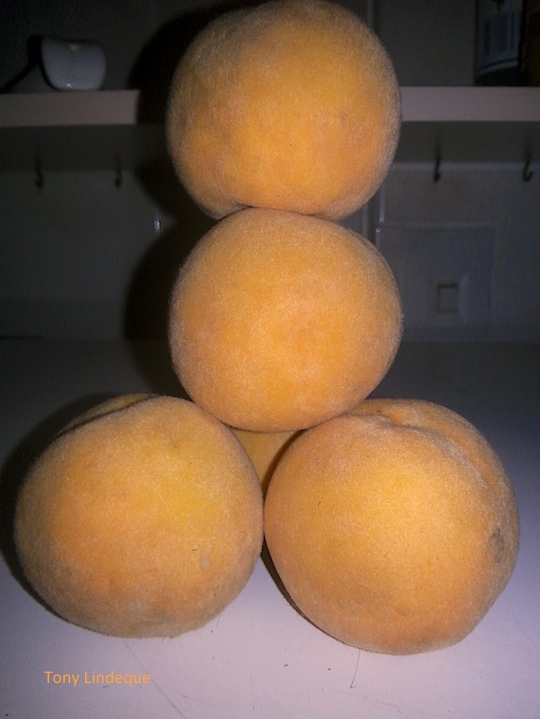 Some peaches for you to look at