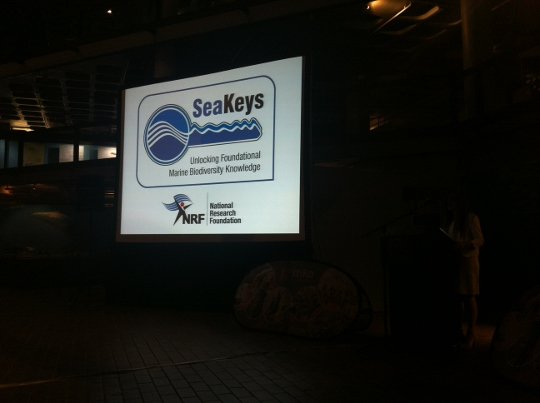 Get involved with the SeaKeys project