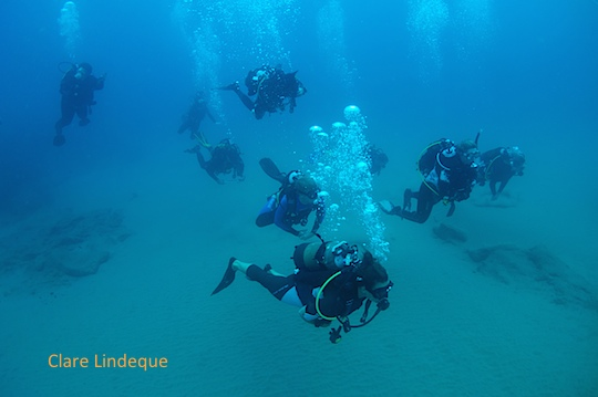 Sodwana diving photos (April 2014) – part I
