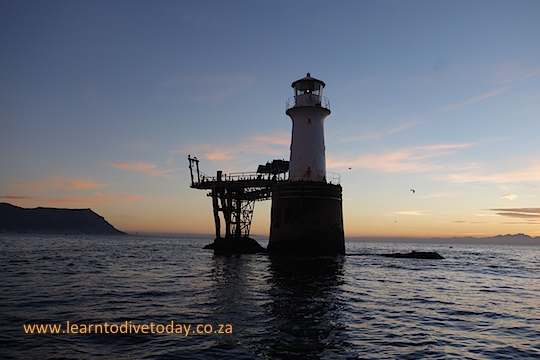 False Bay photo cruise