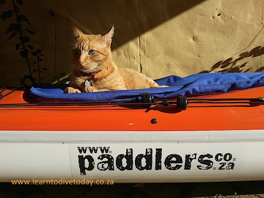 Junior resting on Christo's kayak