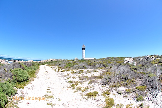 Approaching Hangklip lighthouse along the service road