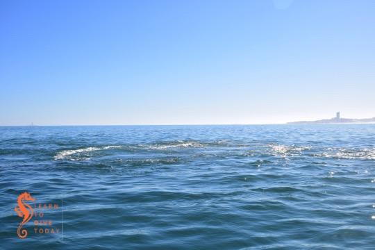 The sea reveals the Seli 1