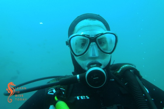 Here's one picture to prove that I dived!