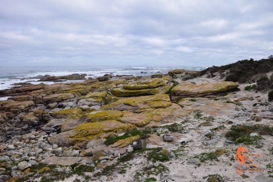 Rocky shores near the head of the trail