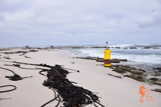 A mysterious abandoned buoy in the surf at the Thomas T Tucker