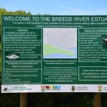 The Breede River estuary