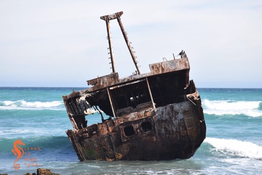 The Meisho Maru 38 wreck is an ideal resting place for birds