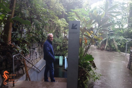 Tony in the Amazon rainforest exhibit