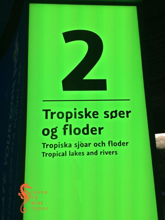 Tropical lakes and rivers