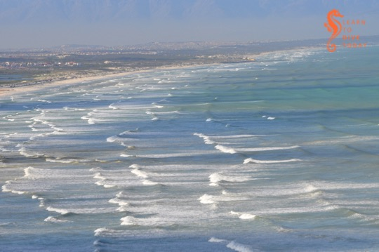 View of Muizenberg showing patches of brown water