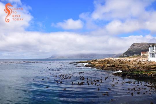 Kalk Bay on a calm day