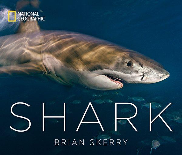Bookshelf: Shark
