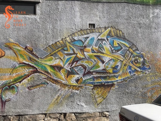 Fish on Killarney Road