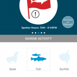 Information on marine life activity