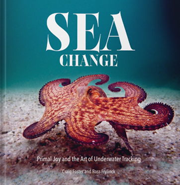 Bookshelf: Sea Change