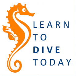Learn to Dive Today Blog