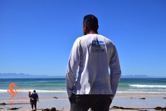 Shark Spotting at Fish Hoek beach