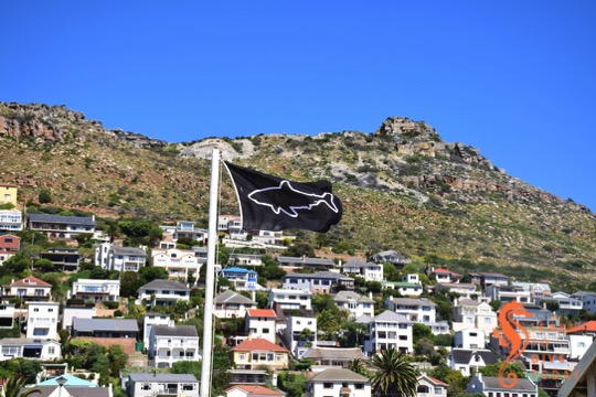 One of the Shark Spotters flags at Fish Hoek beachåç