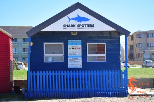 The Shark Spotters hut at Fish Hoek beach