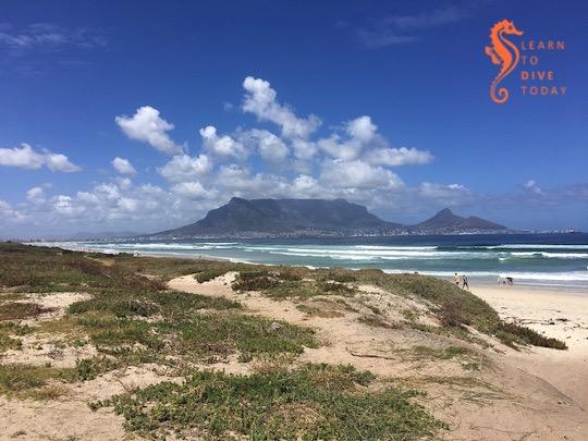 Newsletter: That summer wind